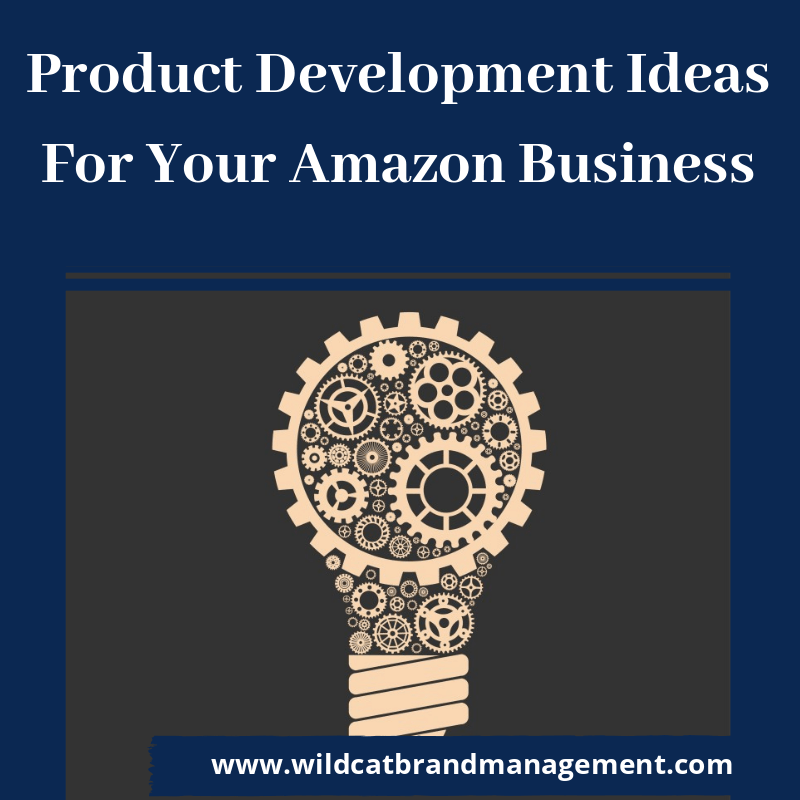 product development ideas