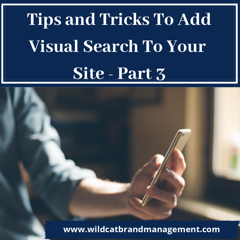 Tips and Tricks To Add Visual Search To Your Site - Part 3