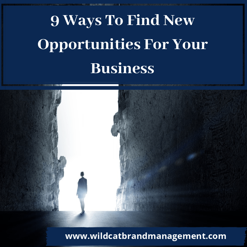 find new opportunities for your business